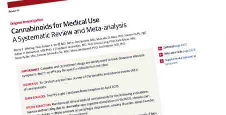Meta-analyse: Cannabismedisin effektivt mot kroniske smerter og spastisitet