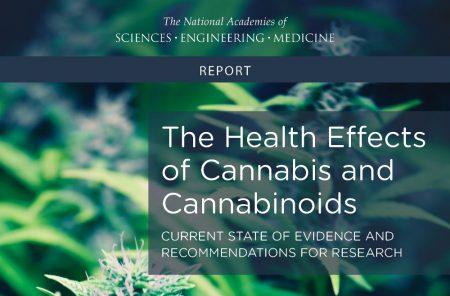 Omfattende rapport finner sterk evidens for at cannabismedisin hjelper kroniske smertepasienter, demper kvalme og reduserer spasmer